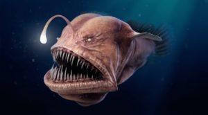 Scariest  creatures